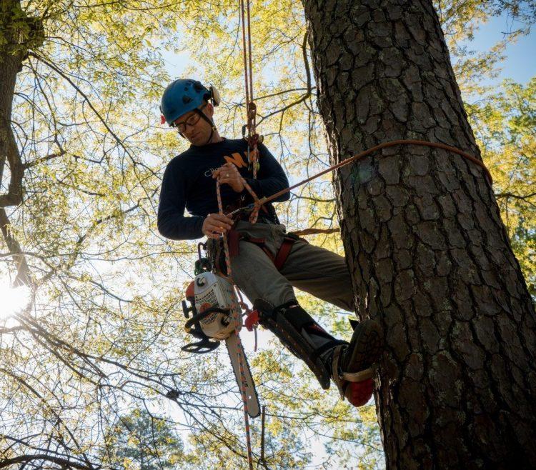 plezalna tehnika obrezovanje